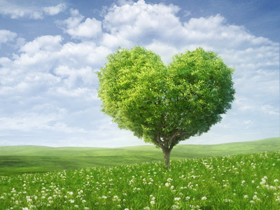 12myths_love-tree